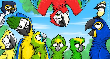 Parrot's Land 2