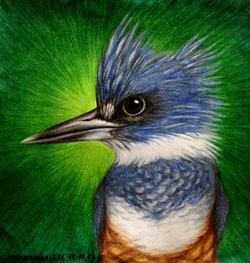 Kingfisher by MadinkaClaireC