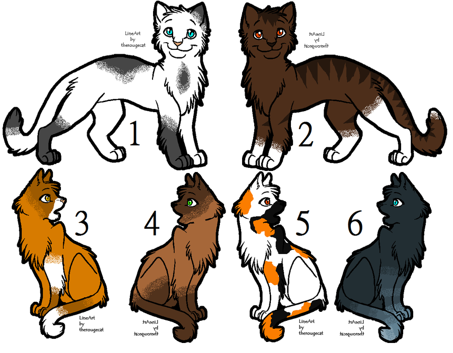 Warrior Cats Birdsong