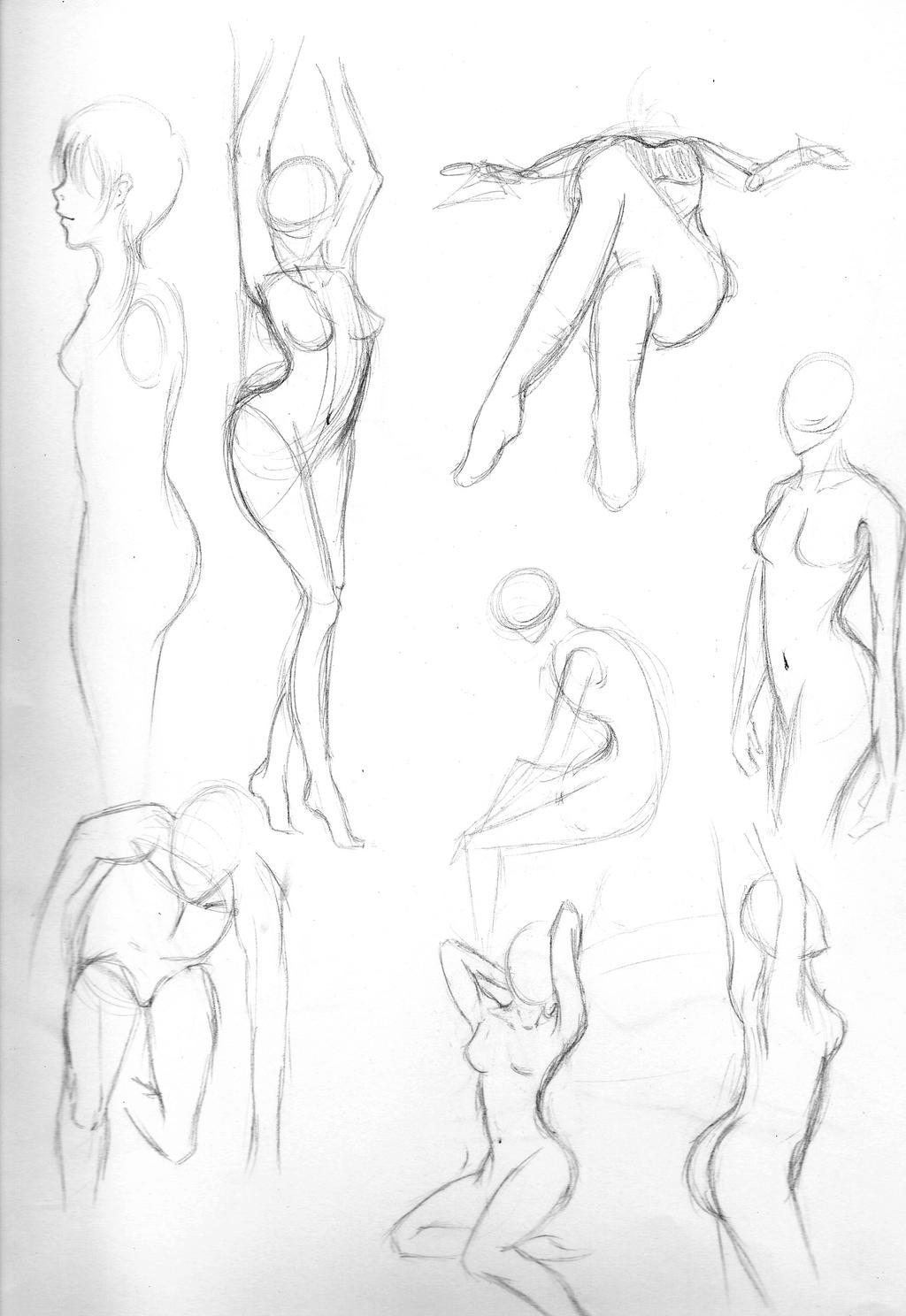 Anatomy Practice Drawing Gallery - human body anatomy