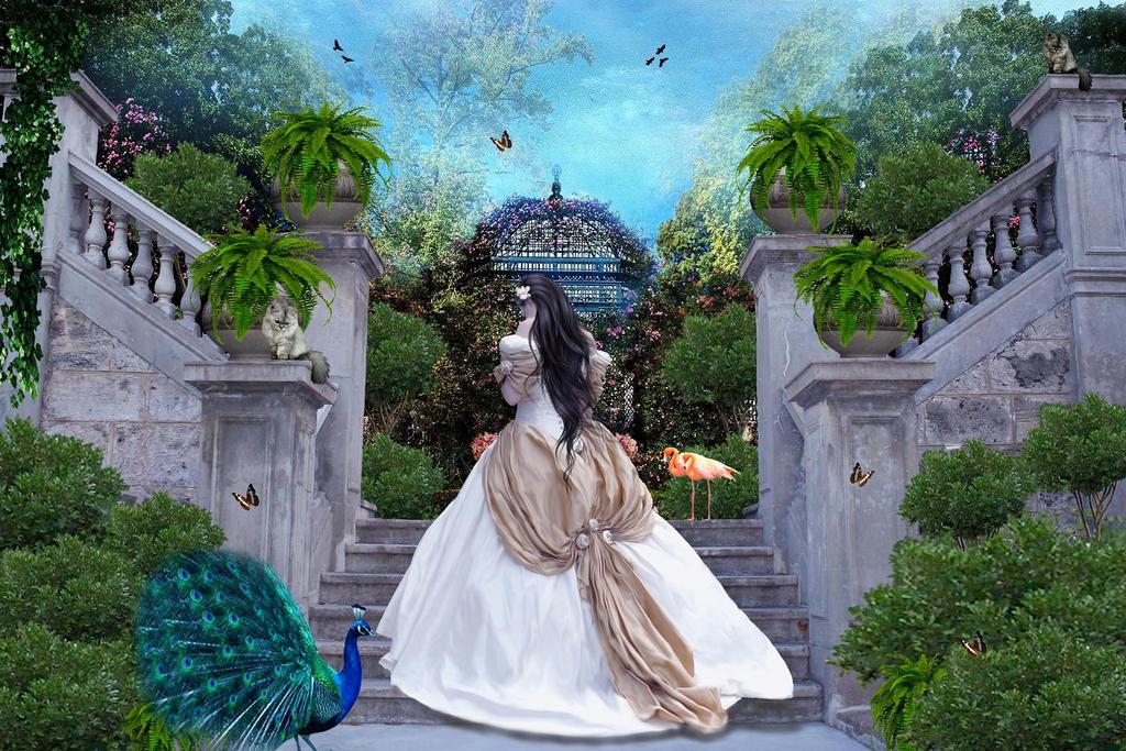 Fern Gardens Madeira Bilder Baumfarnes In Blandy S