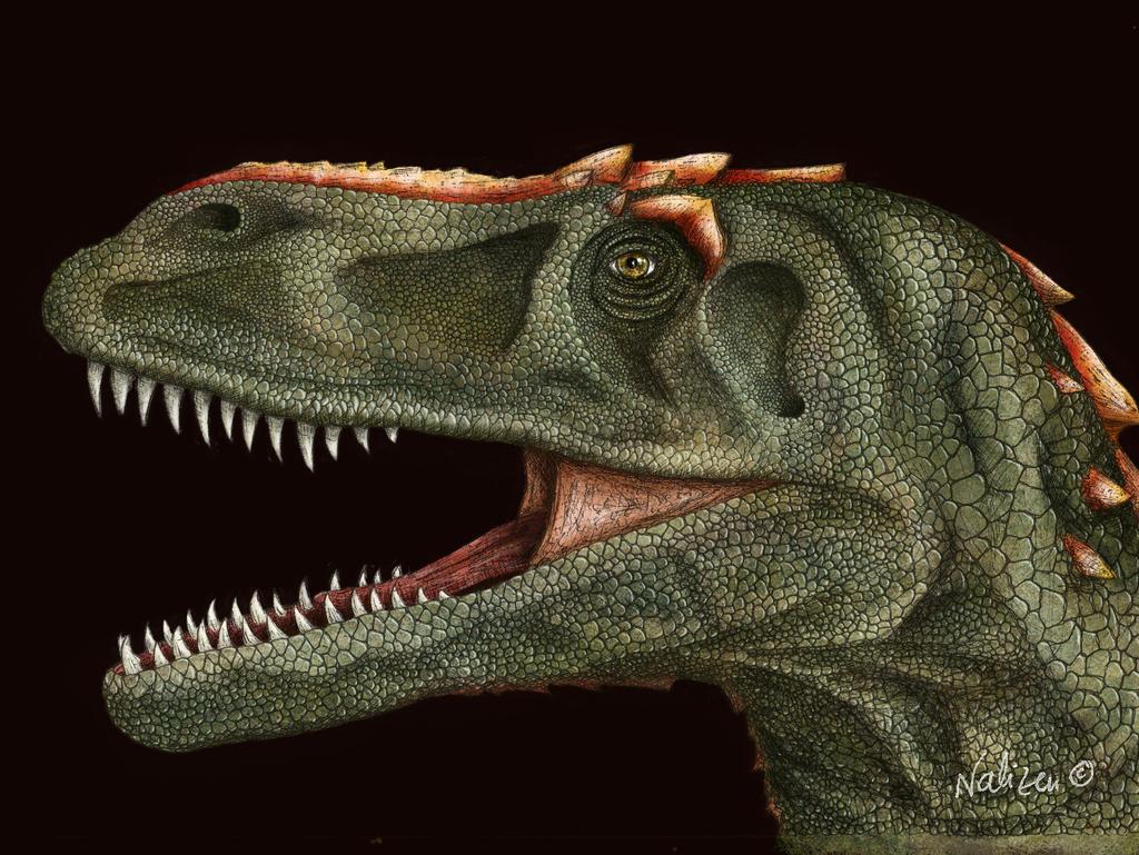 Torvosaurus by NaliZen