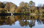 Reflections on Blackwater