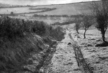 Lane 1 Again