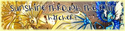 sunshine_hatchery_clanbox_banner_by_rasaliina-d8vcxp6.png