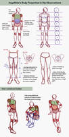 body observations