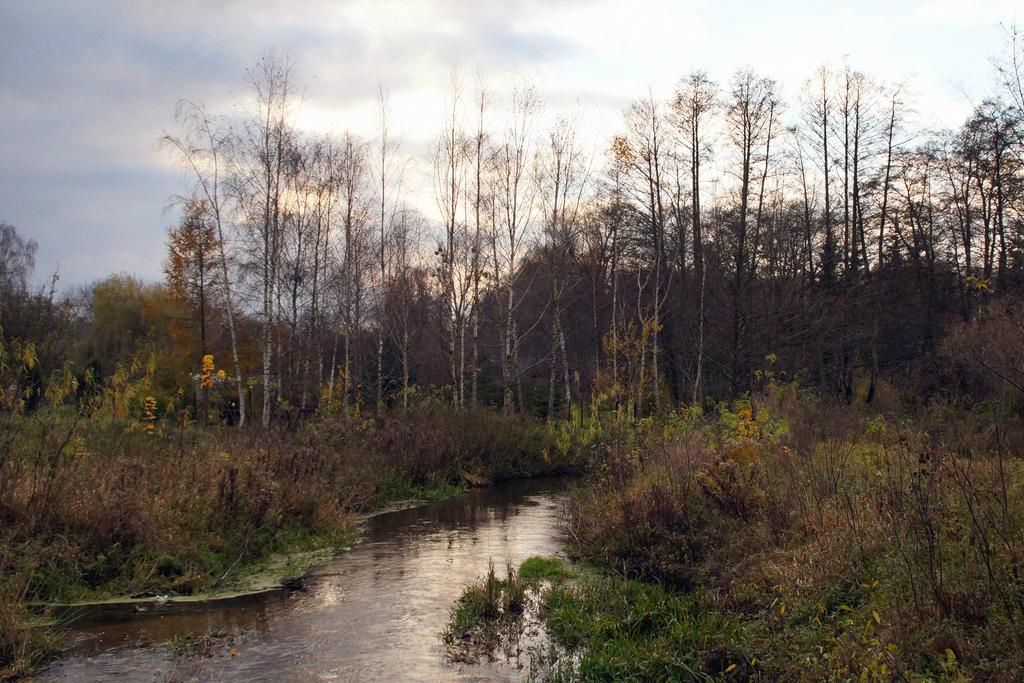 Moltawa River by Su58