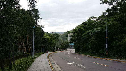 Curved Roadway Uphill