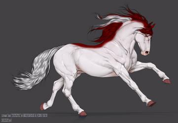 Dreos Stallion Adopt (Closed)