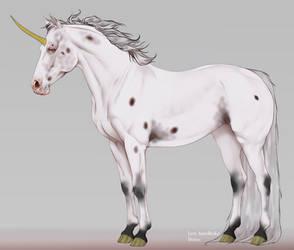 Unicorn Mare