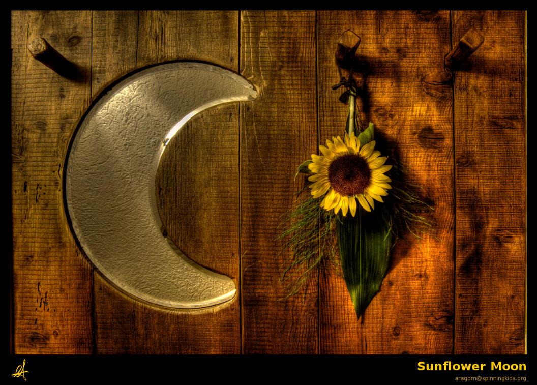 Sunflower Moon by a-r-a on DeviantArt