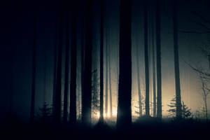 The Mist by ssWss