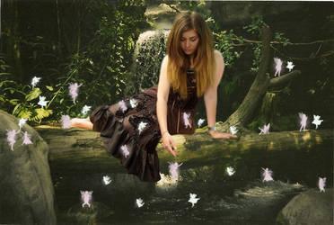 Fairy Forest by Animai-art