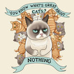 Grumpy cat II