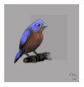 Birdy by Keiton