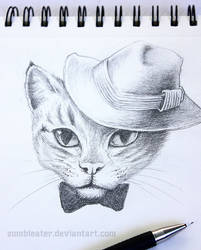 Fancy cat sketch