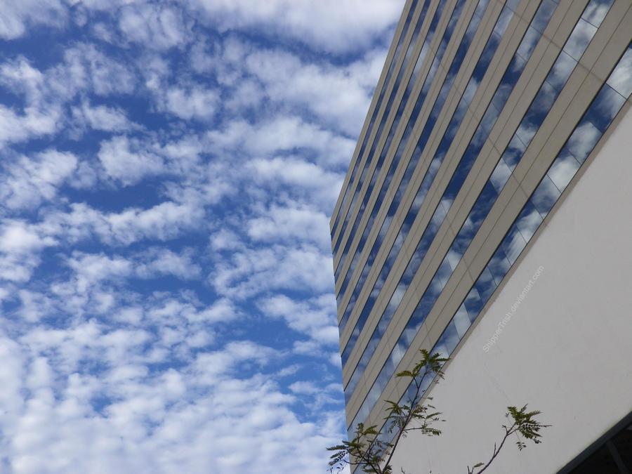 Sky by ShipperTrish