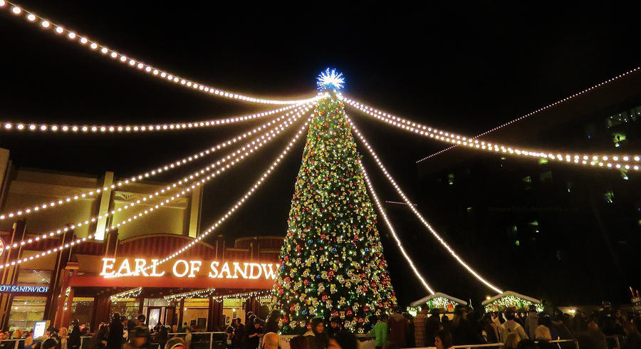 Christmas Tree by ShipperTrish