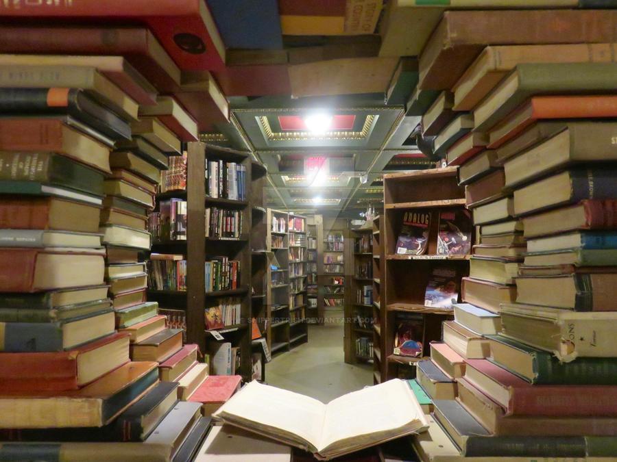 Book Window by ShipperTrish