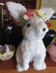 Fancy Bunny by ShipperTrish