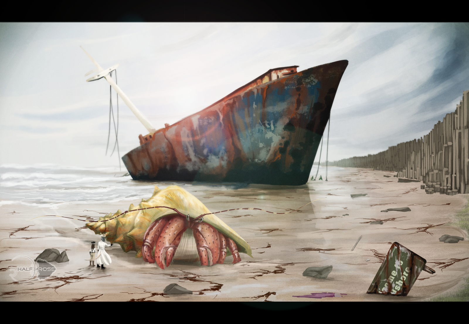 giant_hermit_crab_on_abandoned_beach_by_