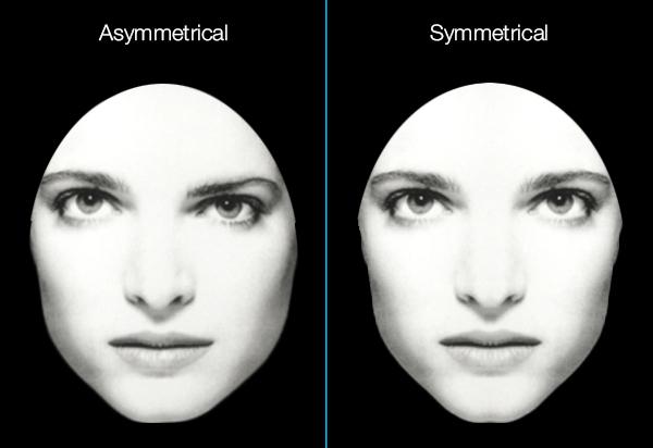 Symmetrical Facial Features
