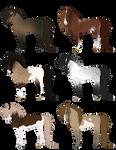 Stallion Adoptables #3 - CLOSED