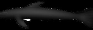 Anthropomundus: Blackfish