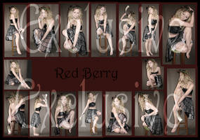 Exclusives Red Berry Fairy
