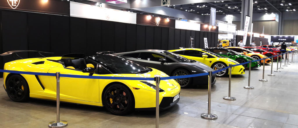 The Glory of the Exotic Raging Bulls by toyonda