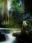 Where Elven Folk Play