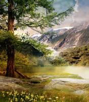 Tree4 by InertiaRose