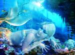 Coral Dreams