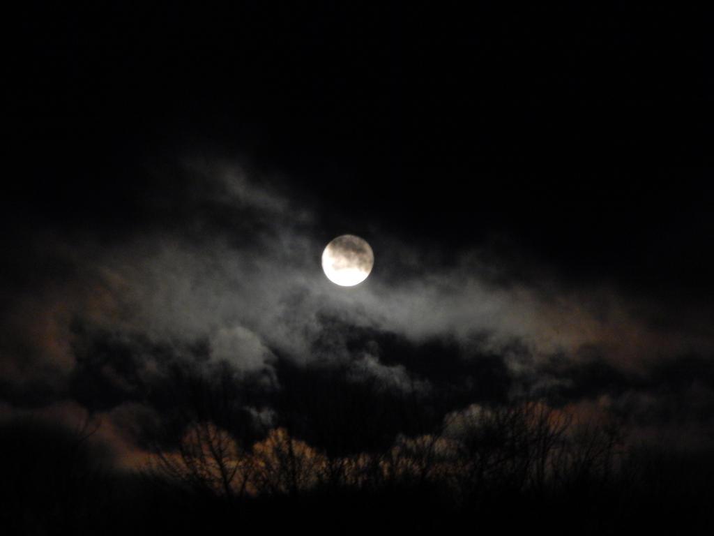 Full Moon Night Sky by moonlghtknt
