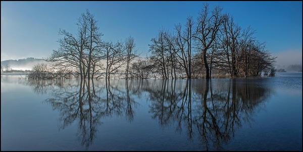 Reflection II by dam-yan