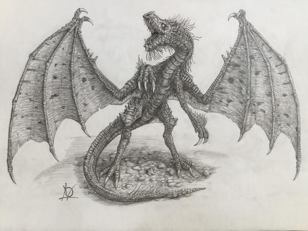 old dragon concept by skarrh