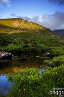 The Gap of Dunloe by cardinal