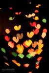 Heart-shaped Bokeh