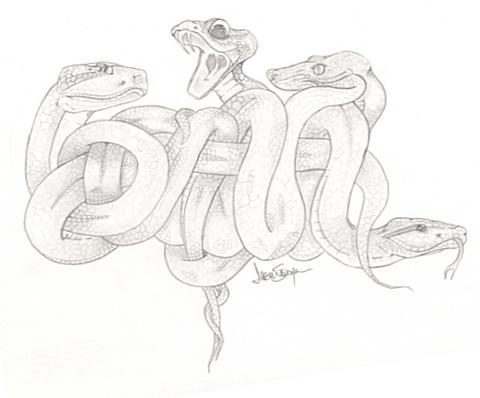 dana snakes by eyefire