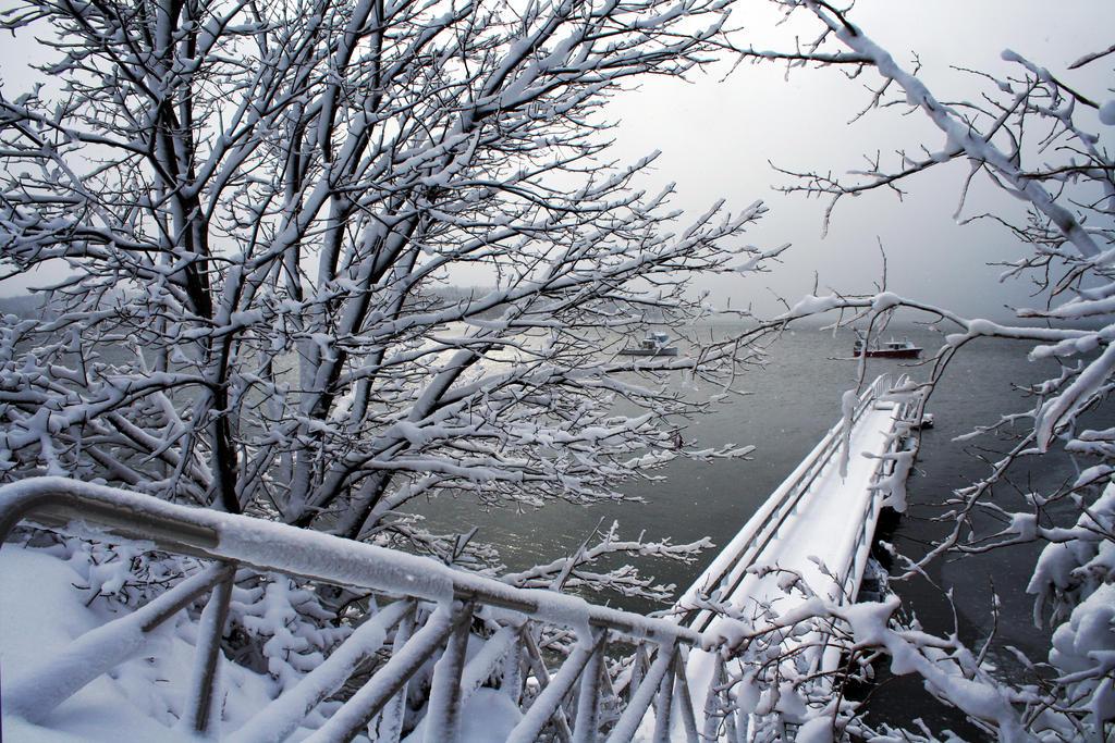 The Hard Freeze by BobVPR