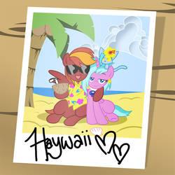 Haywaiian vacation
