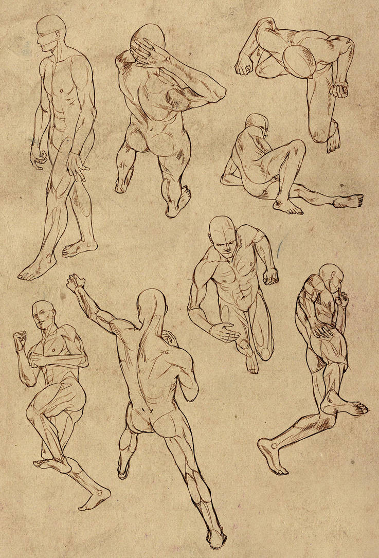 Hard Perspective Anatomy References For Males By Docwendigo On Deviantart