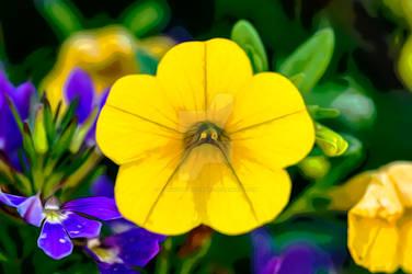 Full yellow flower