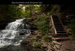 steps and falls