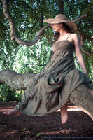rockwood tree