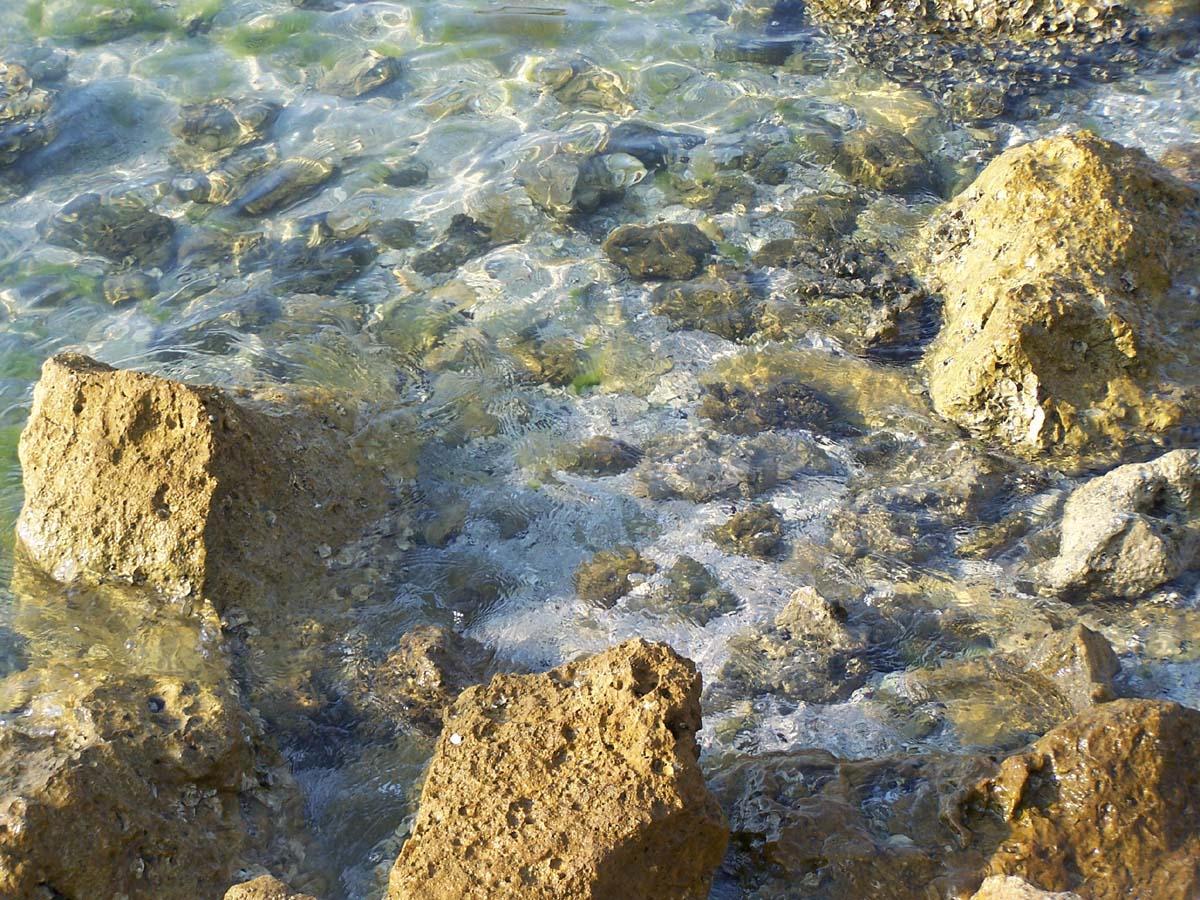 Ocean Rocks 5 by Polly-Stock