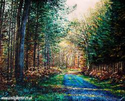 Enlightened Path by emilyjhorner