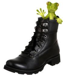 Boot to Gecko by aamir-mustafa