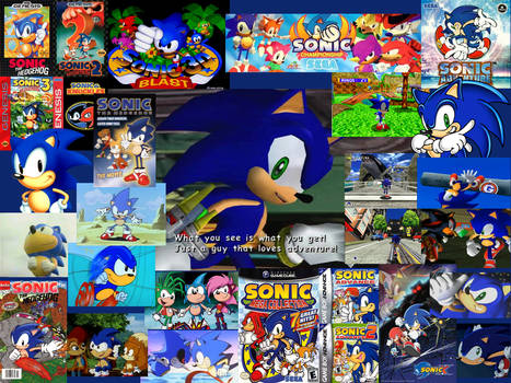 Sonic - Retrospective of the Hedgehog
