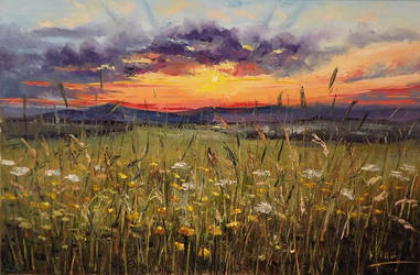 Sunset's Meadow by Kasia1989